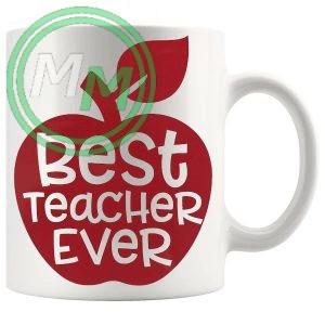 best teacher ever novelty mug