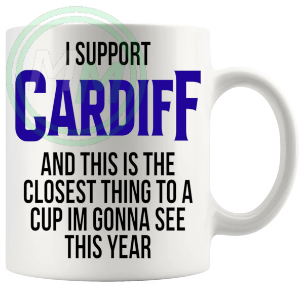 cardiff closest thing to a cup