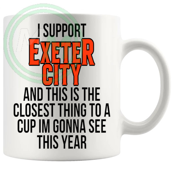 exeter city closest thing to a cup
