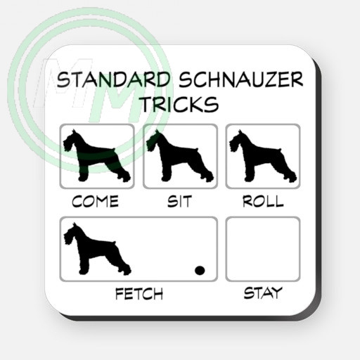 Standard Schnauzer Tricks Coaster