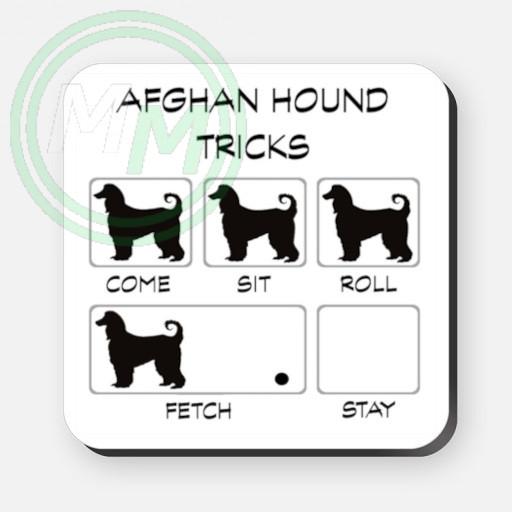 afghan hound tricks coaster