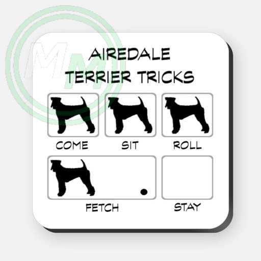 airedale terrier tricks coaster
