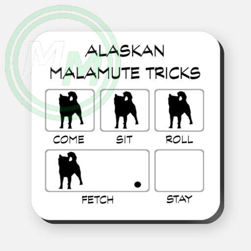 alaskan malamute tricks coaster