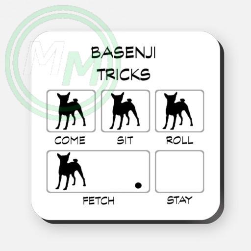 basenji tricks