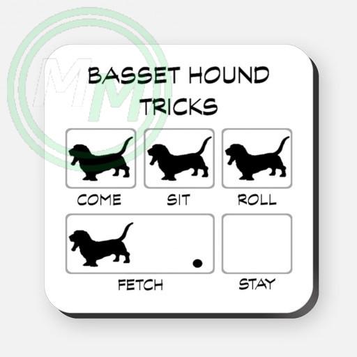 basset hound tricks