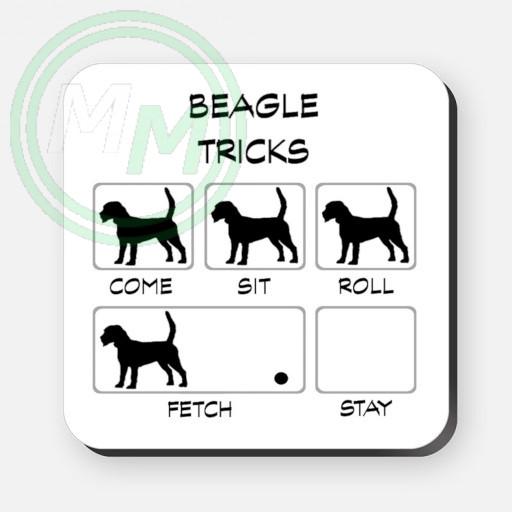 beagle tricks
