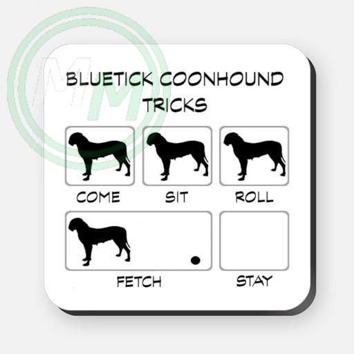 bluetick coonhound tricks