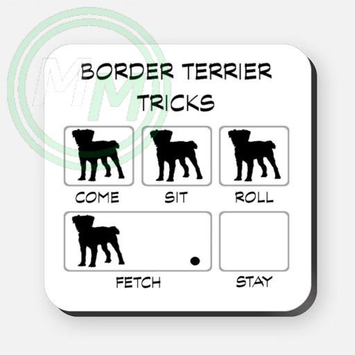 border terrier tricks