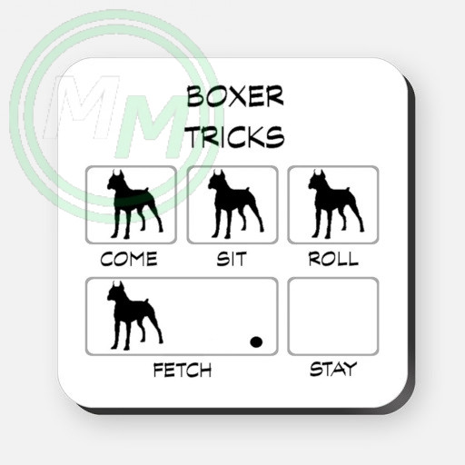 boxer tricks