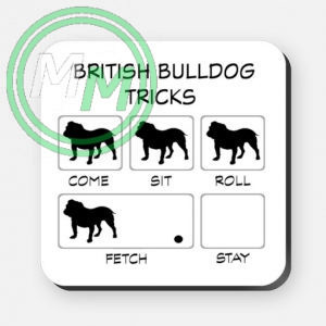 british bulldog tricks
