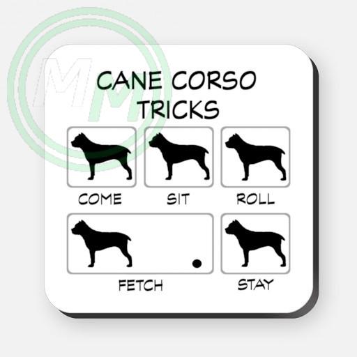 cane corso tricks