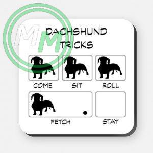 dachschund tricks