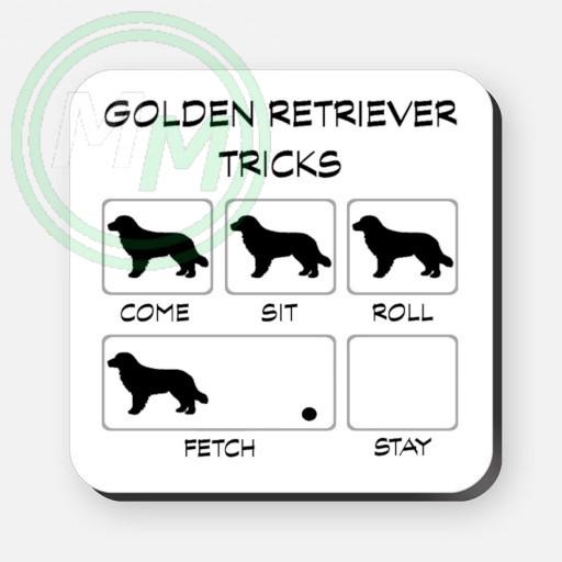 golden retriever tricks