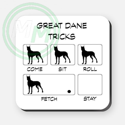 great dane tricks