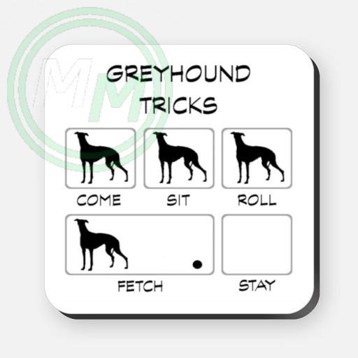 greyhound tricks