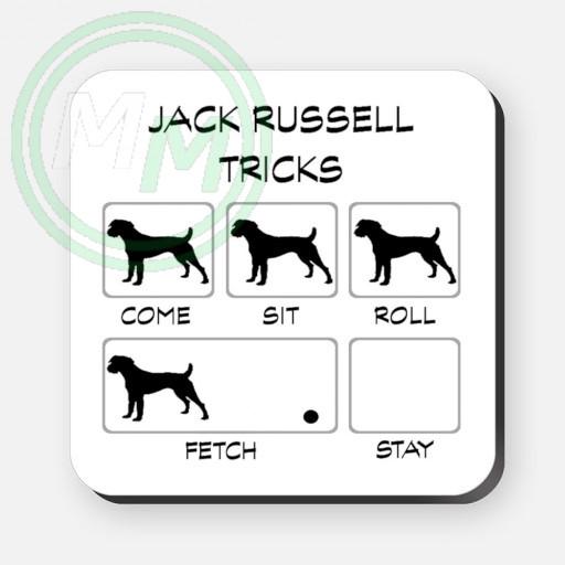 jack russell tricks