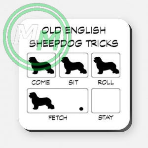 old english sheepdog tricks