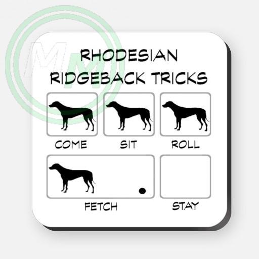 rhodesian ridgeback tricks