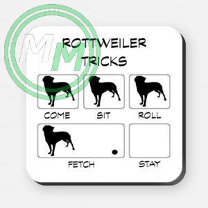 rottweiler tricks