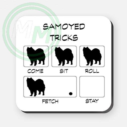 samoyed tricks