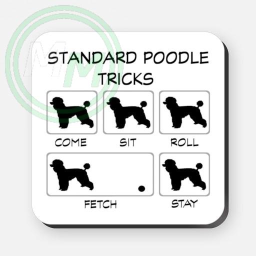 standard poodle tricks