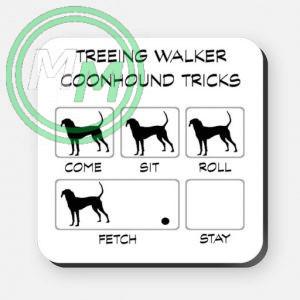 treeing walker coonhound tricks