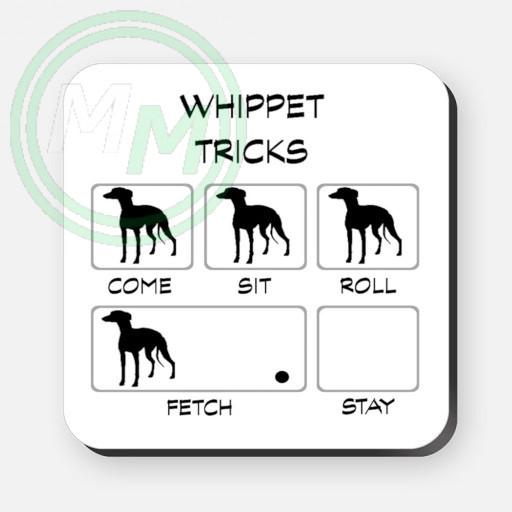 whippet tricks