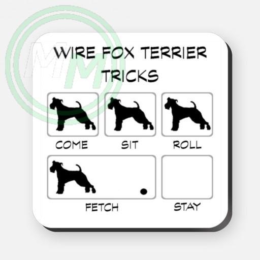 wire fox terrier tricks