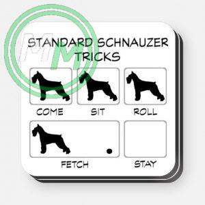 Standard Schnauzer Tricks Coasters 2 pack