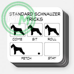 Standard Schnauzer Tricks Coasters 4 pack 1